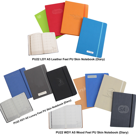 Diaries-and-Notebooks